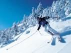 mountain_skis